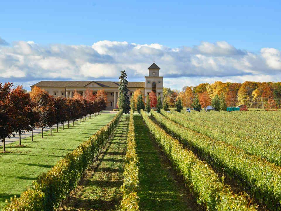 Vignoble vignoble Two Sisters Vineyard Niagara-on-the-Lake Ontario Canada Ulocal produit local achat local