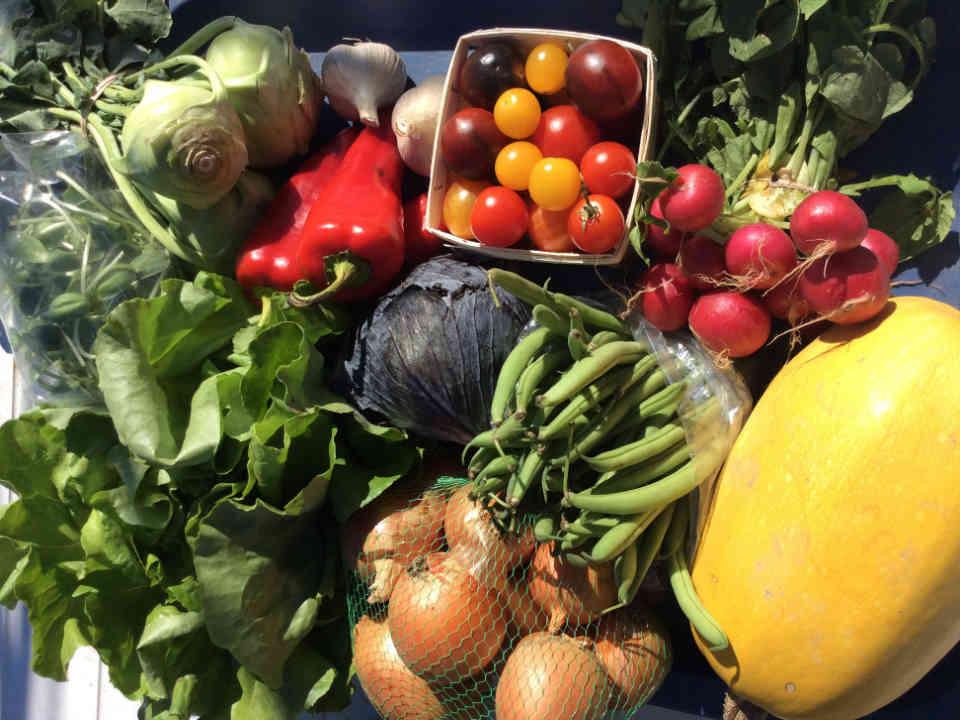 Fermiers de famille fruits et légumes bio panier bio Aux Quatre Chemins Sainte-Victoire-de-Sorel Ulocal produit local achat local