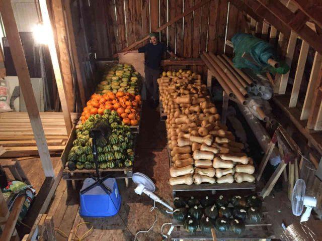 Fermiers de famille fruits et légumes biologiques Coopérative La Charrette Charette Ulocal produit local achat local