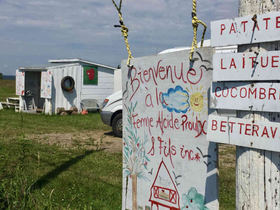 Food market fruit and vegetables farm bovine Farm Alcide Proulx et Fils inc. Cap-d'Espoir Quebec Canada product terroir Ulocal local product local purchase