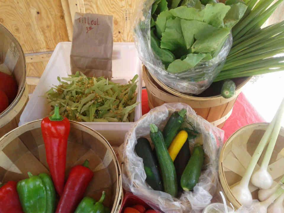 Fermiers de famille fruits et légumes biologiques Ferme Jardins des Bocages inc. Cookshire-Eaton Ulocal produit local achat local