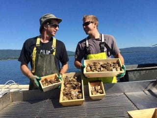Alimentation moules huîtres Ferme maricole du Grand Large Carleton-sur-Mer Québec Canada Ulocal produit du terroir produit local achat local