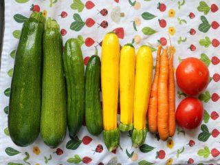 Fermiers de famille fruits et légumes bio paniers bio Coop Les Jardins de la Résistance Ormstown Ulocal produit local achat local