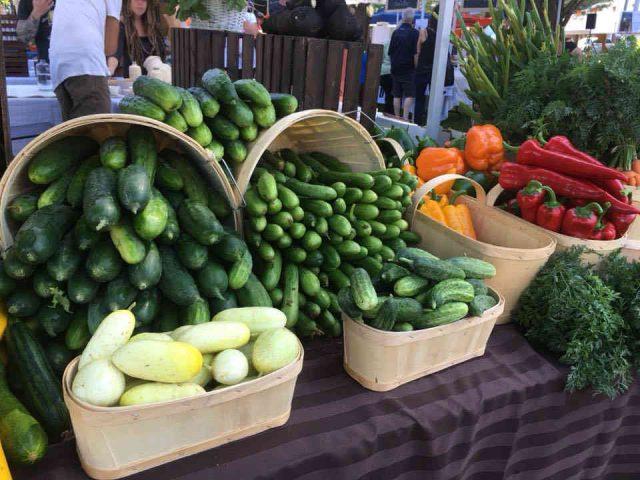 Fermiers de famille fruits et légumes bio paniers bio La petite terre maraîchère Saint-Boniface Ulocal produit local achat local