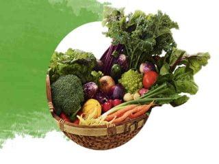 Fermiers de famille fruits et légumes biologiques paniers bio Les jardins de l'Ile-Dupas Ulocal produit local achat local
