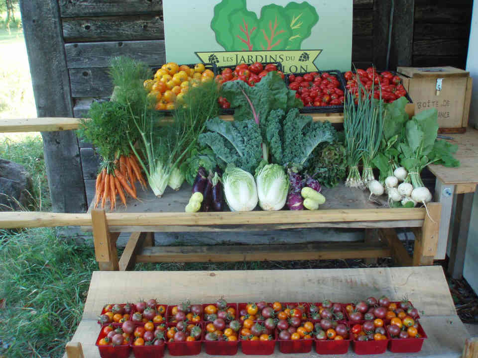 Farmers family baskets organic fruits and vegetables Les Jardins du Moutonblon Saint-Charles-sur-Richelieu Ulocal local product local purchase
