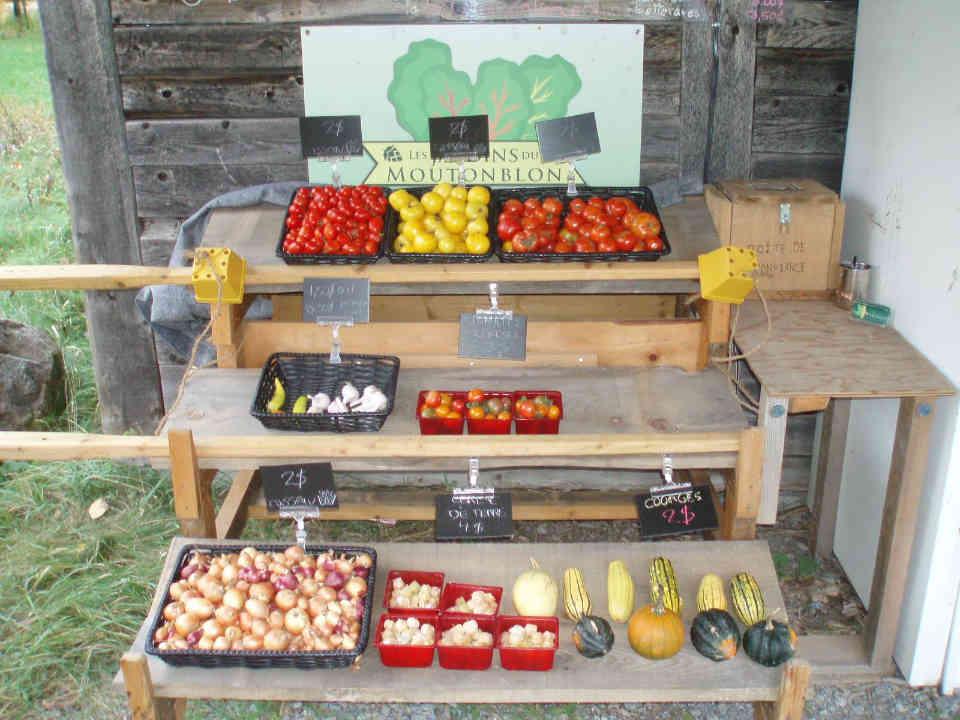 Fermiers de famille paniers bio fruits et légumes Les Jardins du Moutonblon Saint-Charles-sur-Richelieu Ulocal produit local achat local