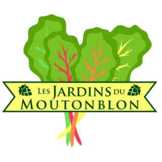 Farmers family baskets organic fruits and vegetables Les Jardins du Moutonblon Saint-Charles-sur-Richelieu Ulocal local product local purchase