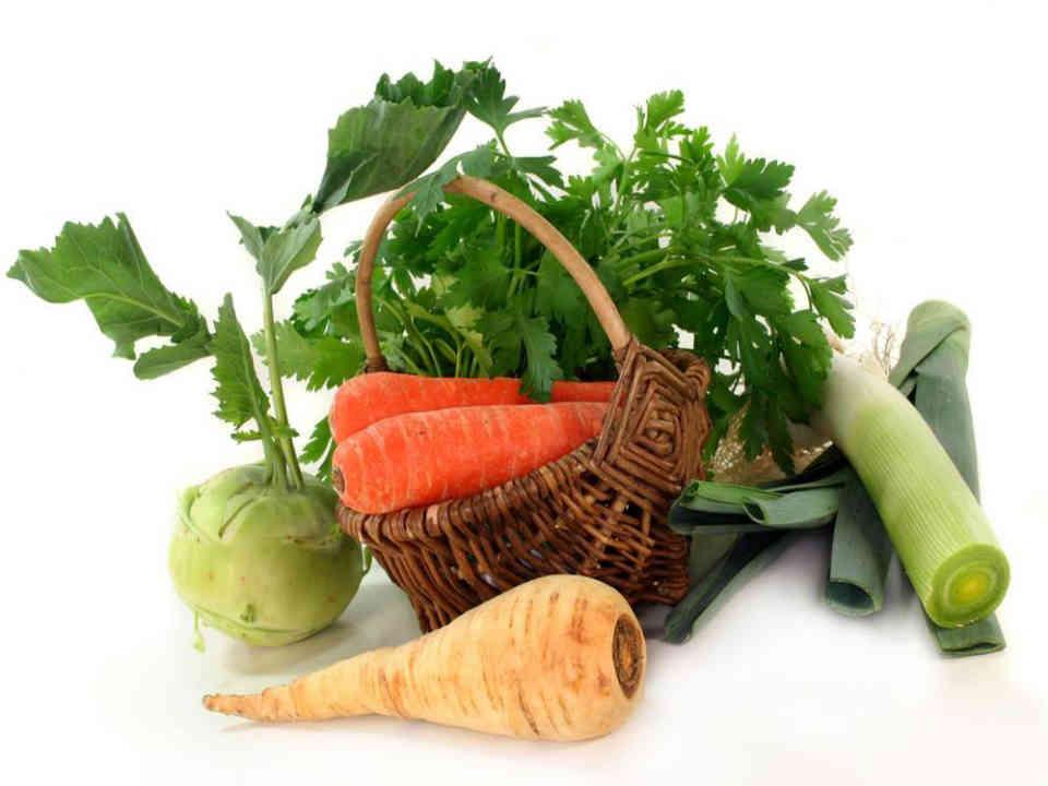 Fermiers de famille paniers bio fruits et légumes Les Jardins du Petit Tremble Saint-Roch-de-Richelieu Ulocal produit local achat local