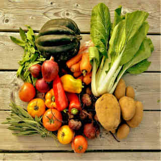 Family farmers baskets organic fruits and vegetables The Jardins du Pied in Terre Lamartine Ulocal local product local purchase