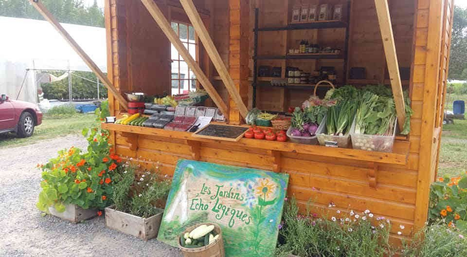 Family Farmers organic fruit baskets organic vegetables The Logical Echoes Gardens Notre-Dame-des-Monts Ulocal local product local purchase