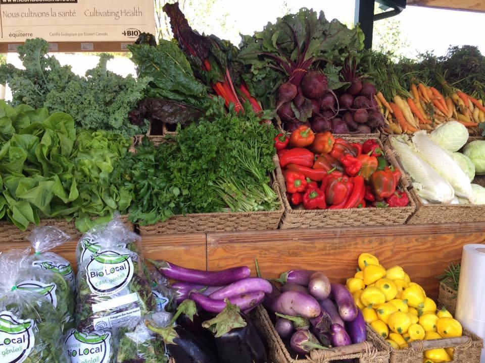Fermiers de famille fruits et légumes bio paniers bio Les Potagers des Nues Mains Ulocal produit local achat local