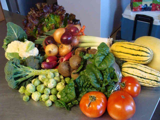 Fermiers de familles fruits et légumes bio paniers bio vente de viandes volaille Plumes et légumes Laval Ulocal produit local achat local