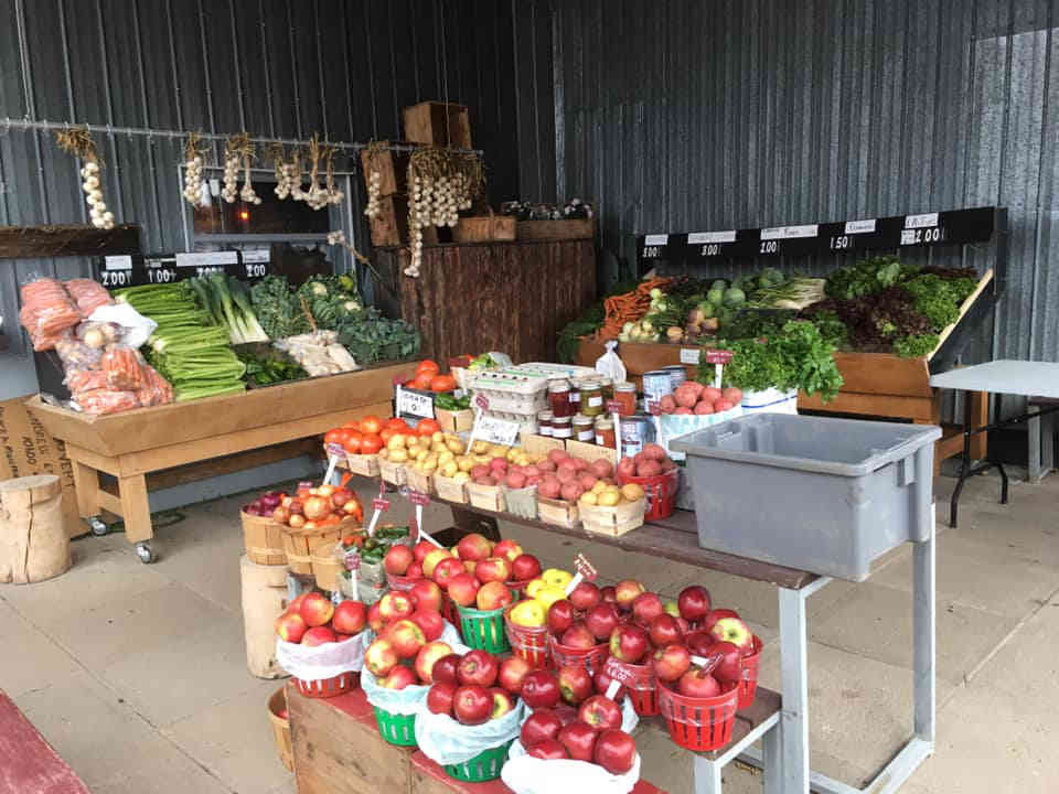 Fermiers de famille fruits et légumes bio paniers bio Potager France Marcoux Québec Ulocal produit local achat local
