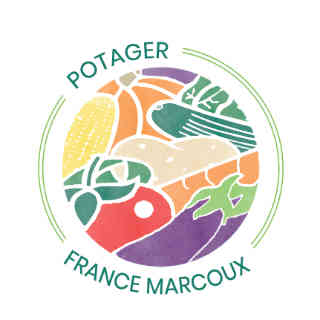 Farmers of organic fruits and vegetables organic baskets Potager France Marcoux Quebec Ulocal local product local purchase
