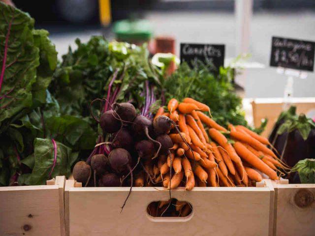 Fermiers de famille fruits et légumes biologiques paniers bio Ferme du Santropol Roulant Senneville Ulocal produit local achat local