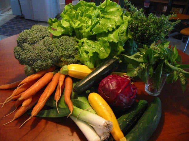 Fermiers de famille fruits et légumes bio paniers bio Terra Sativa Terre de cultures Inc. Saint-Alban Ulocal produit local achat local