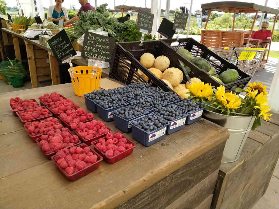 Fermiers de famille fruits et légumes biologiques paniers bio pommiers Terre Fruitière Dunham Ulocal produit local achat local