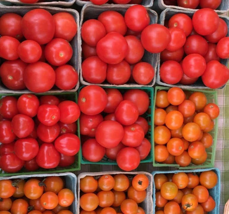 Family Farmer Tomatoes East Brook Community Farm Walton New York United States Ulocal Local Product Local Purchase