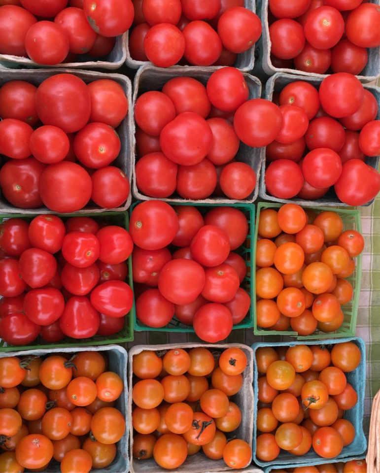 Fermier de famille tomates East Brook Community Farm Walton New York États-Unis Ulocal produit local achat local