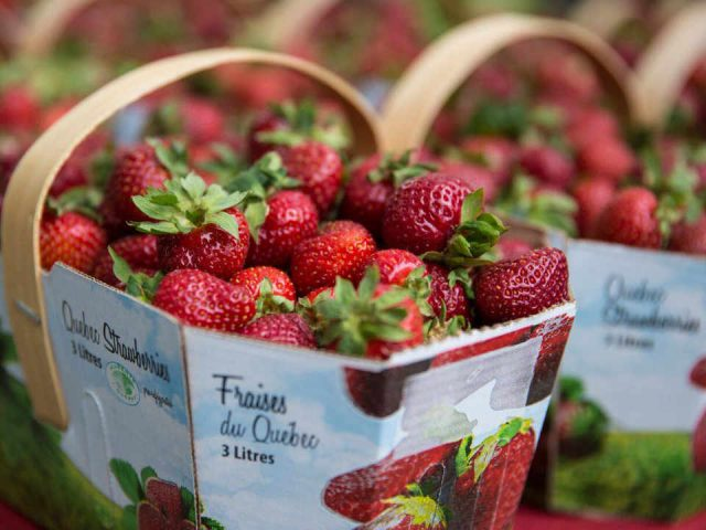 Public Market strawberries Marché Old Chelsea Market Chelsea Quebec Canada Ulocal Local Product Local Purchase