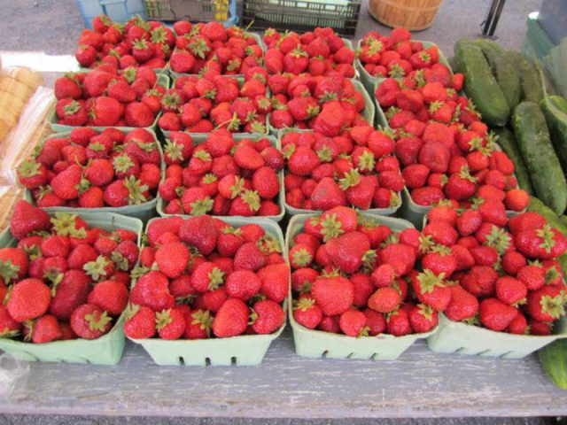 Marché public fraises Maxville Farmers' Market Maxville Ontario Canada Ulocal produit local achat local