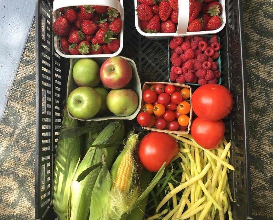 Marché de fruits et légumes panier de fruits et légumes McGregor's Produce Braeside Ontario Canada Ulocal produit local achat local