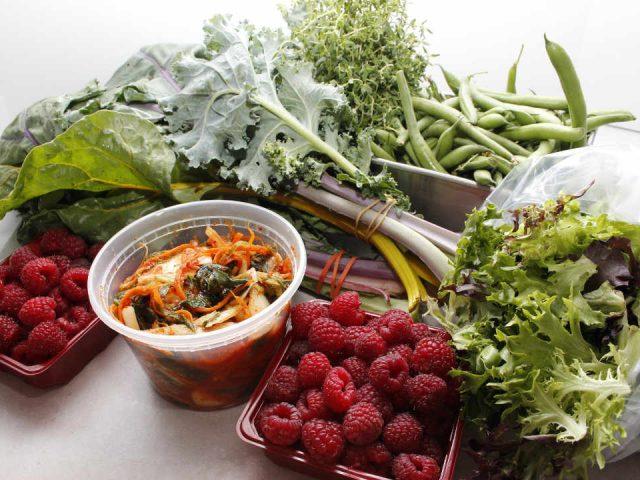 Fermier de famille fruits et légumes Mikes Garden Harvest Ottawa Ontario Canada Ulocal produit local achat local