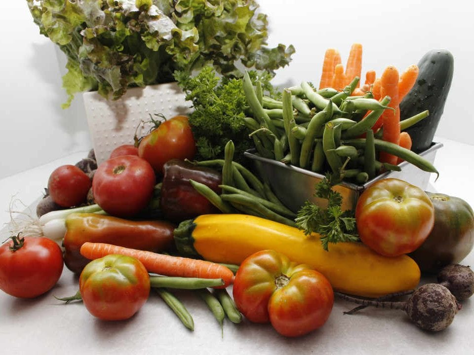 Family farmer vegetable Mikes Garden Harvest Ottawa Ontario Canada Ulocal local product local purchase