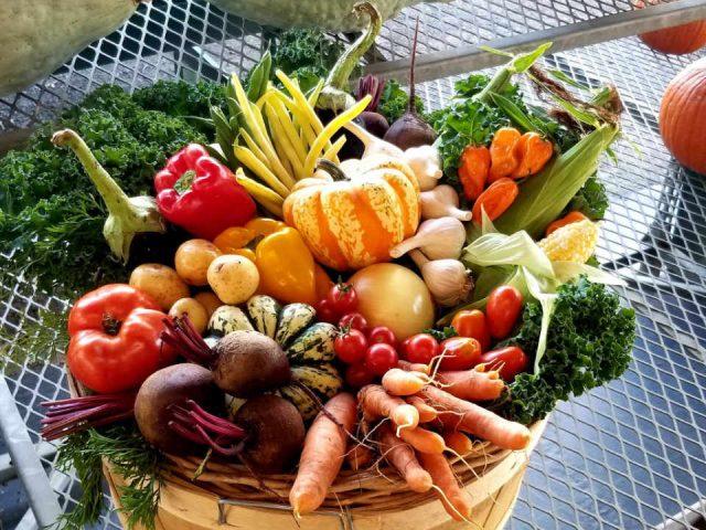 Marché de fruits et légumes panier de légumes Millers Farm, Market & Garden Centre Ottawa Ontario Canada Ulocal produit local achat local