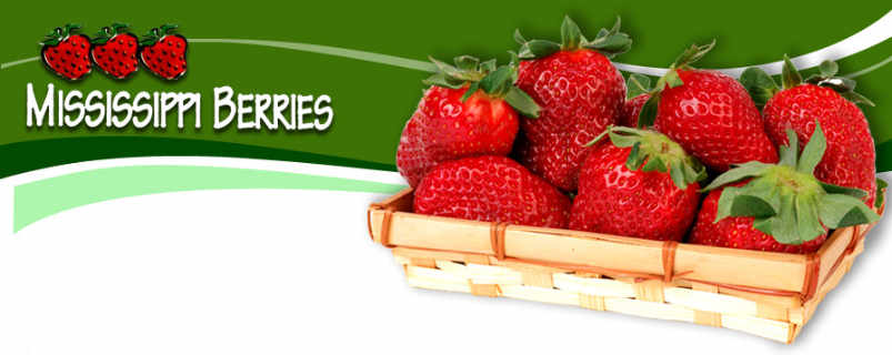 Produce picking logo Mississippi Berries Lanark Ontario Canada Ulocal Local Product Local Purchase