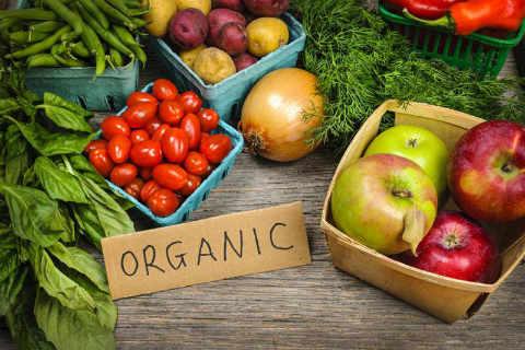 Marché public fruits et légumes biologiques Ottawa Organic Farmers' Market Ottawa Ontario Canada Ulocal produit local achat local