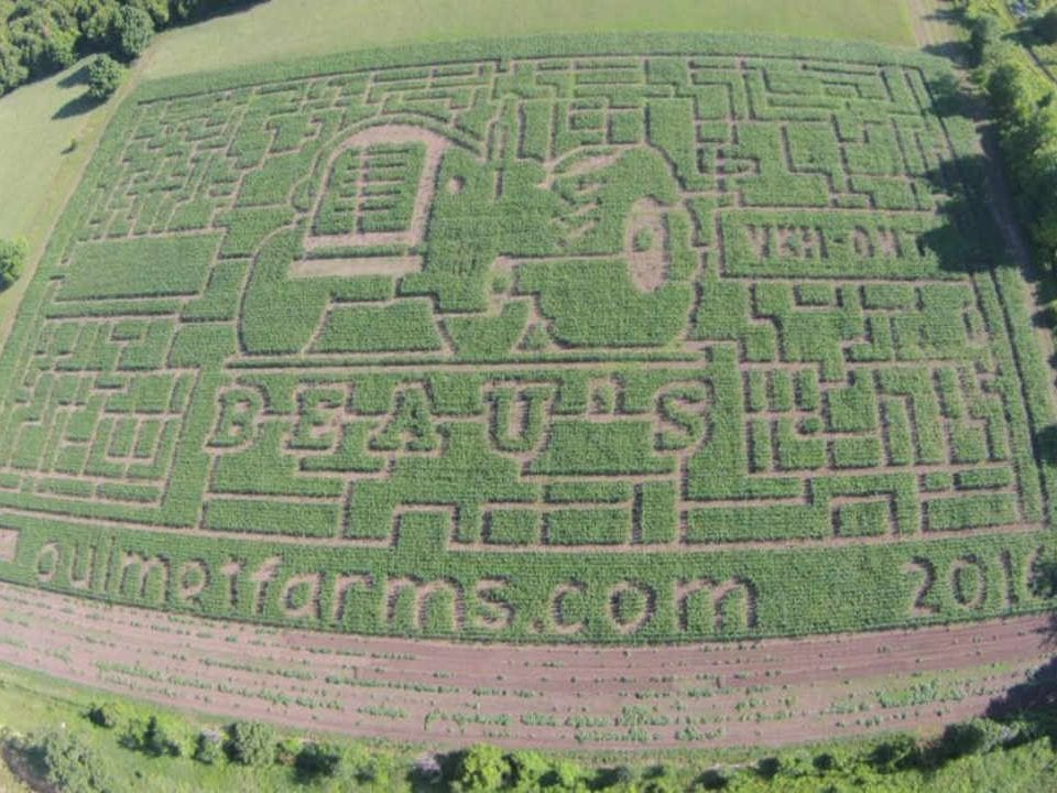 Produce Market corn maze Ouimet Farms Adventure Vankleek Hill Ontario Canada Ulocal Local Product Local Purchase
