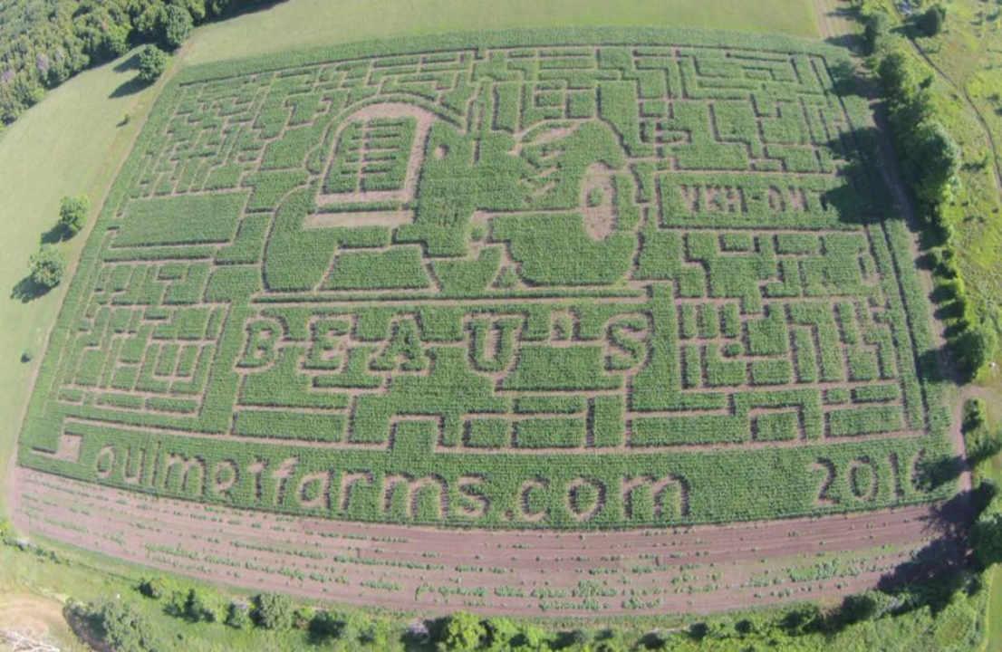 Marché fruits et légumes labyrinthe maïs Ouimet Farms Adventure Vankleek Hill Ontario Canada Ulocal produit local achat local