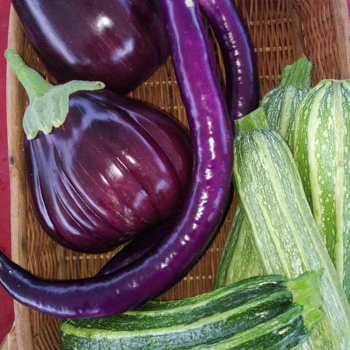 Fermier de famille aubergines courges Our Farm Ottawa Ontario Canada Ulocal produit local achat local