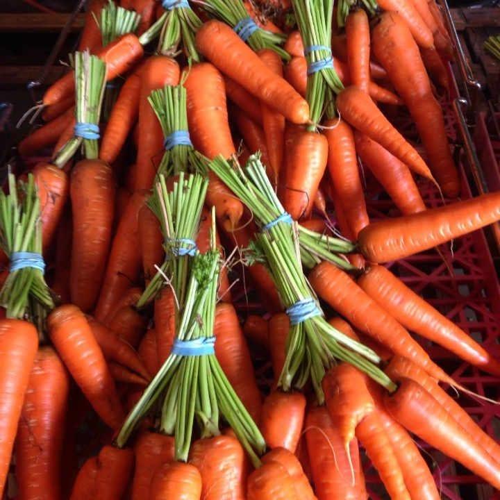 Family Farmer carrots Our little Farm Thurso Quebec Canada Ulocal local product local purchase
