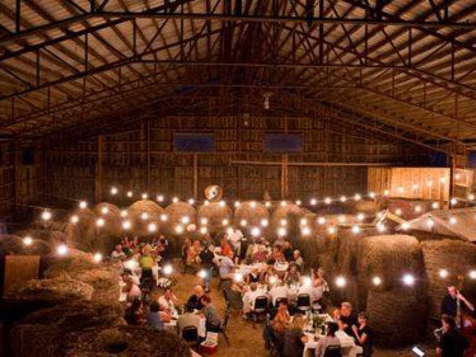 Sale of meat Farm to Table Dinners Peabody Farm Venosta Quebec Canada Ulocal local product local purchase
