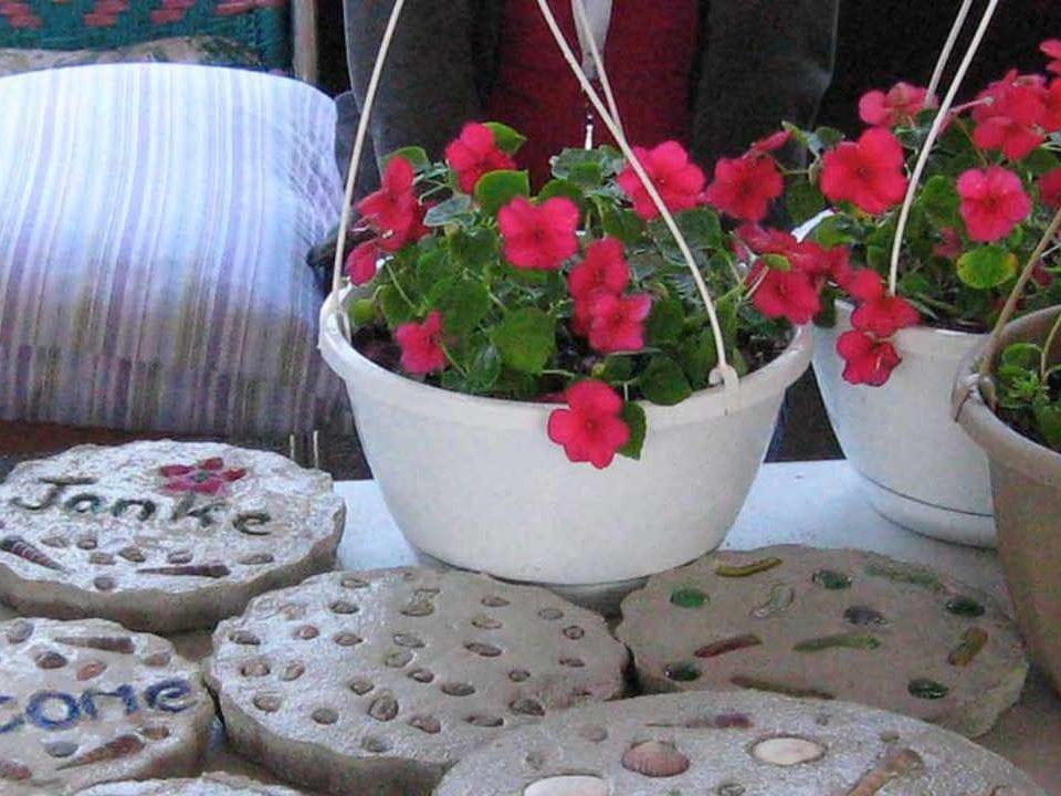 Public Market plants Pembroke Farmers Market Pembroke Ontario Canada Ulocal Local Product Local Purchase