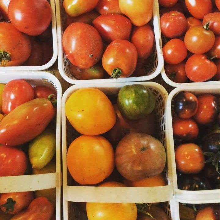 Marché public tomates Perth Farmers' Market Perth Ontario Canada Ulocal produit local achat local