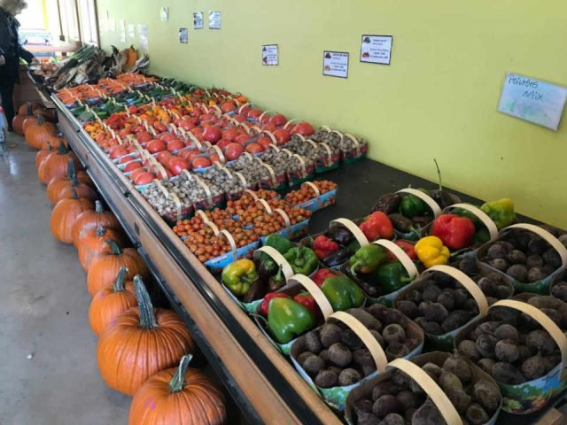 Produce Market Showcase Vegetable and Fruit Potager Eardley Gatineau Quebec Canada Ulocal Local Product Local Purchase