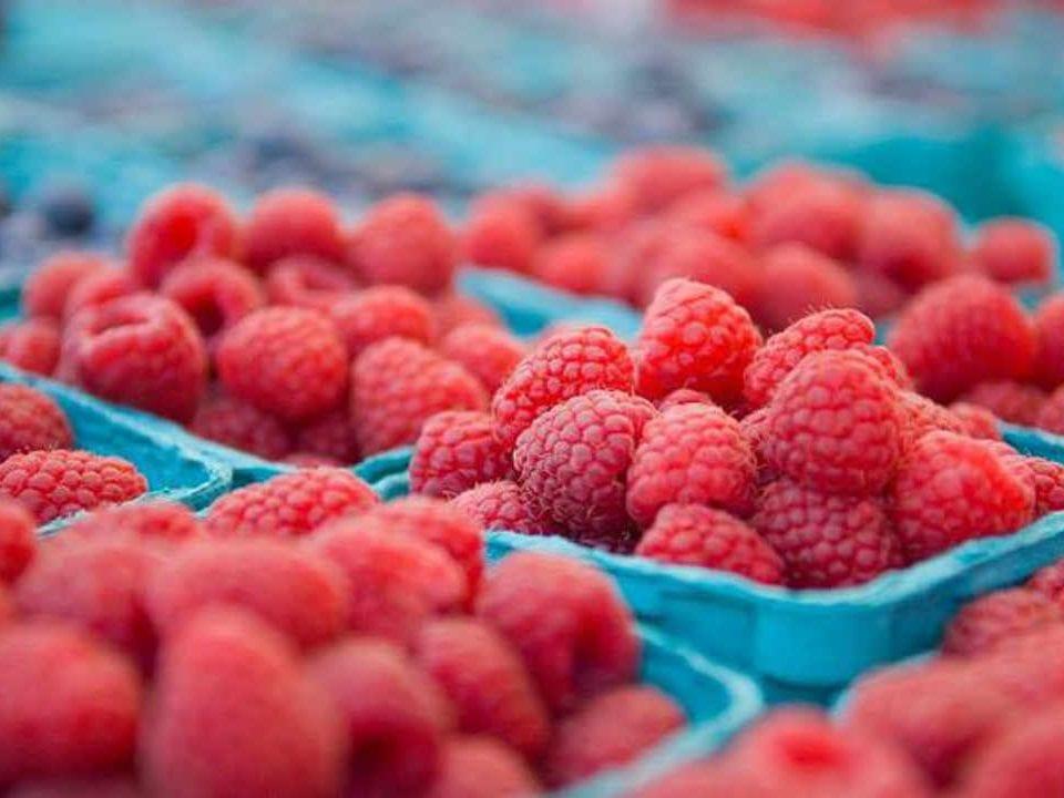 Marché de fruits et légumes framboises Proulx Maple & Berry Farm Ottawa Ontario Canada Ulocal produit local achat local