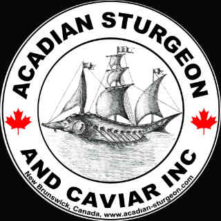 Acadian Fish Food Sturgeon And Caviar Inc. Carters Point NB Canada Ulocal local produce local produce local purchase