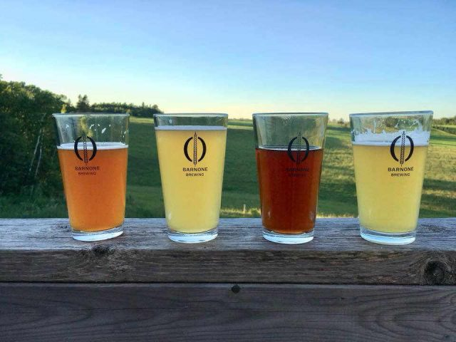 Microbrasserie alcool Barnone Brewery Breadalbane PE Canada Ulocal produit local achat local produit terroir