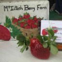 Pick-your-Own Fruit and Vegetable Market Charlie McIntosh's Berry Farm Johnville New Brunswick Canada Ulocal Local Product Local Purchase