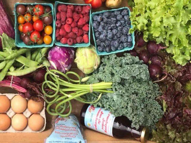 Fruits et légumes biologiques vente de viandes oeufs Codiac Organics Ltd. Moncton Nouveau-Brunswick Canada Ulocal produit local achat local produit terroir