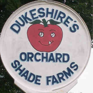 Apple picking Dukeshire's Apples - Orchard Shade Farms Northampton New Brunswick Ulocal Local Product Local Purchase
