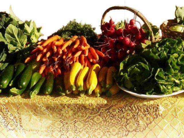 Fruits et légumes Tabusintac Nouveau-Brunswick Ulocal produit local achat local produit du terroir