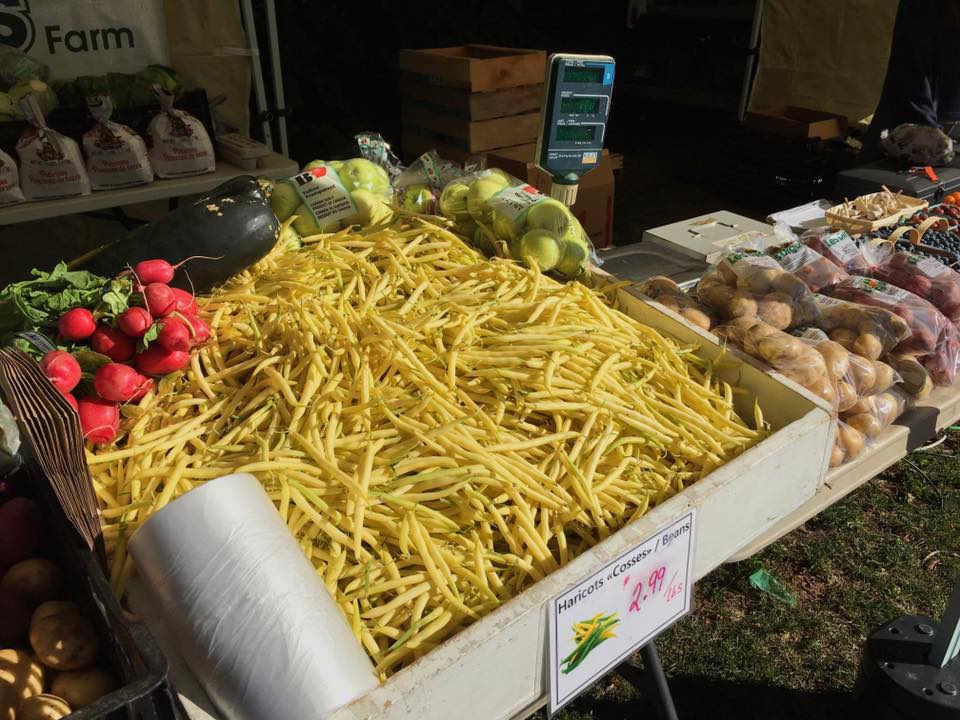Marché de fruits et légumes autocueillette fraises Ferme Les Digues Farm Grande-Digue NB Ulocal produit local achat local