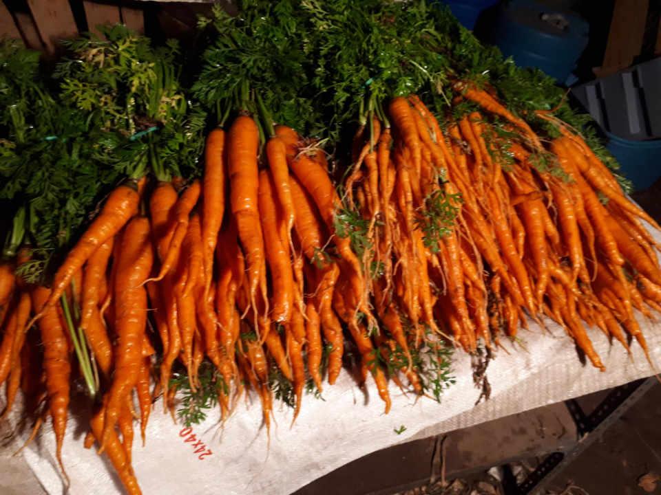 Meat Sale Vegetable Food Goddard Farms Berwick New Brunswick Canada Ulocal Local Product Local Product Local Product