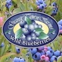 Bleuets fruits Granite Town Farms Saint George NB Canada Ulocal produit local achat local produit terroir